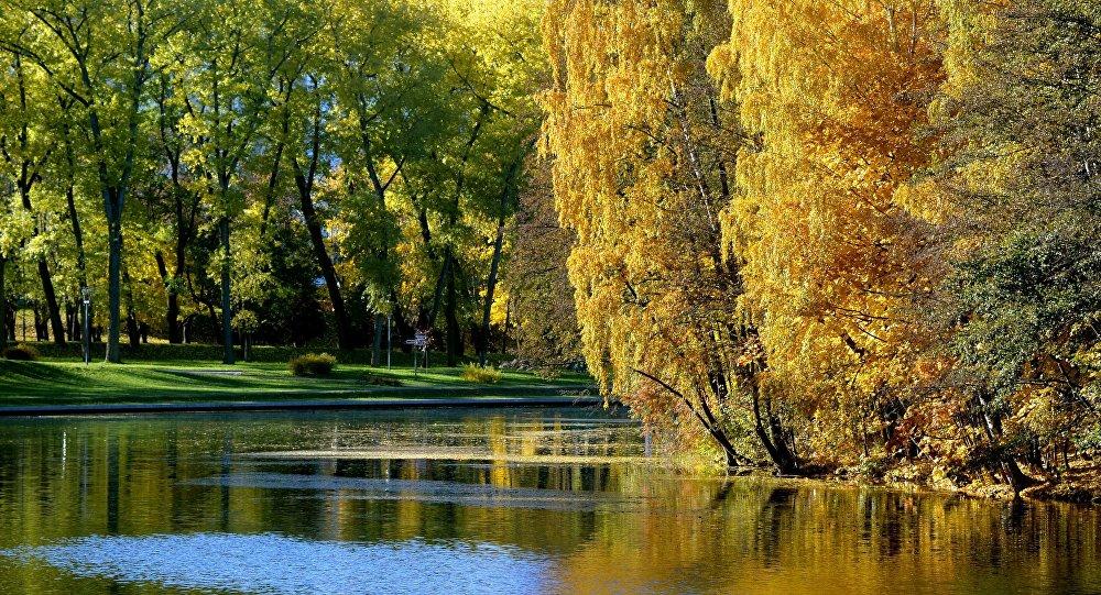 1-ый месяц осени будет теплее обычного— Август осенью