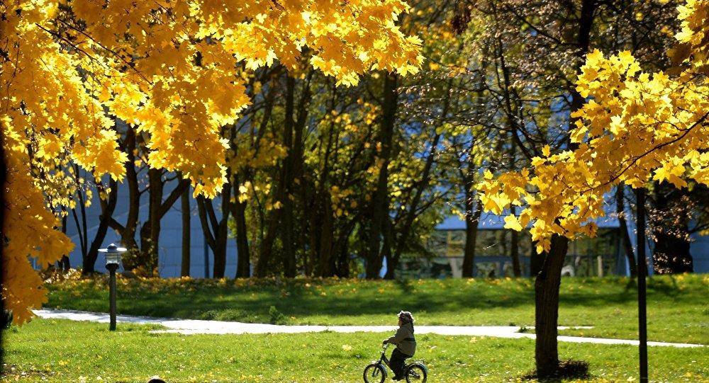 Ребенок на велосипеде в минском парке