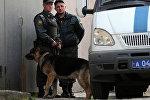 Суд арестовал белгородского стрелка Помазуна