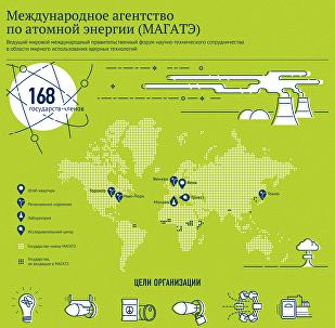 Международное агентство по атомной энергии (МАГАТЭ)