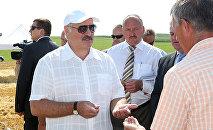 Александр Лукашенко и Николай Корбут (в центре) во время рабочей поездки в Минский район, 29 июля 2014 года