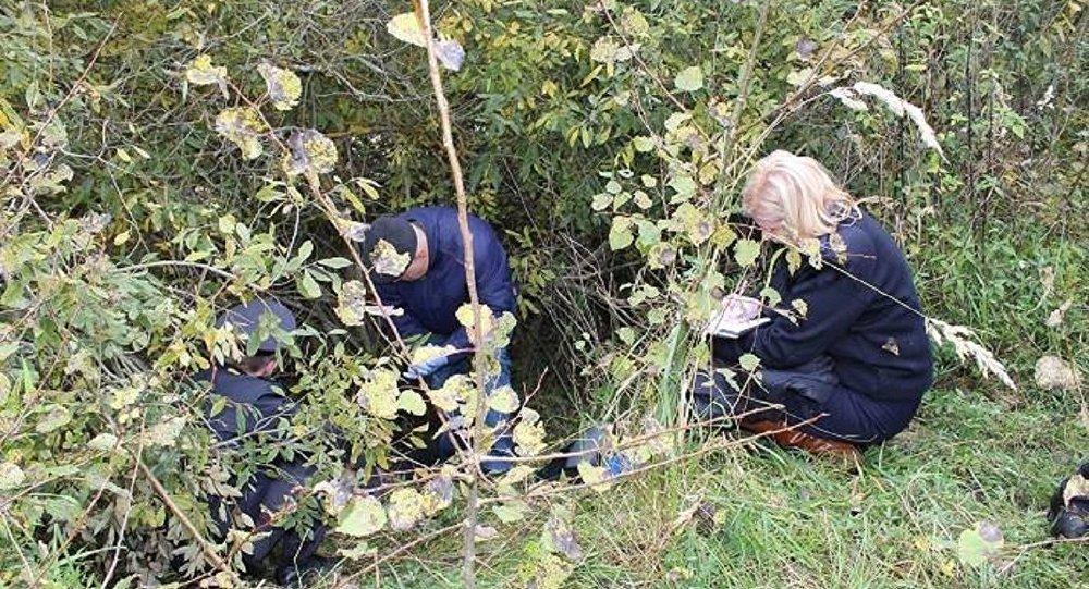 ВШумилинском районе вкустах отыскали тело замдиректора витебской компании