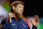 Празднование Дня единства и согласия в Чеченской Республике