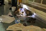 Спутник_Хвостатые пассажиры: дворняжка родила девять щенков в вагоне метро
