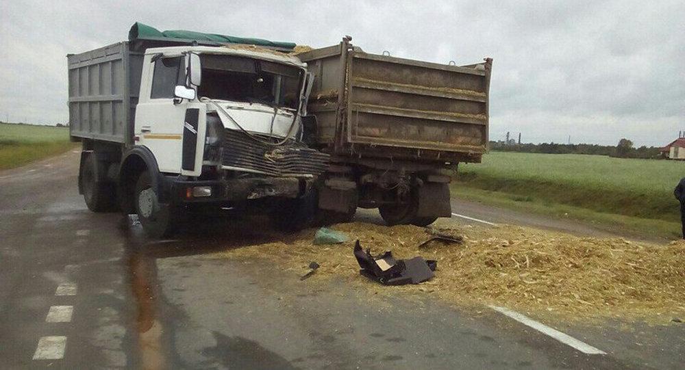 Два грузового автомобиля столкнулись вКобринском районе— пострадал один изводителей