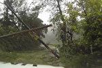 Спутник_Затопленные улицы и поваленные деревья - последствия урагана Мэтью на Гаити