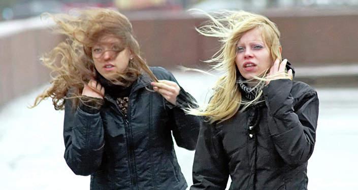 Больше всего отвчерашнего ветра пострадала Витебская область