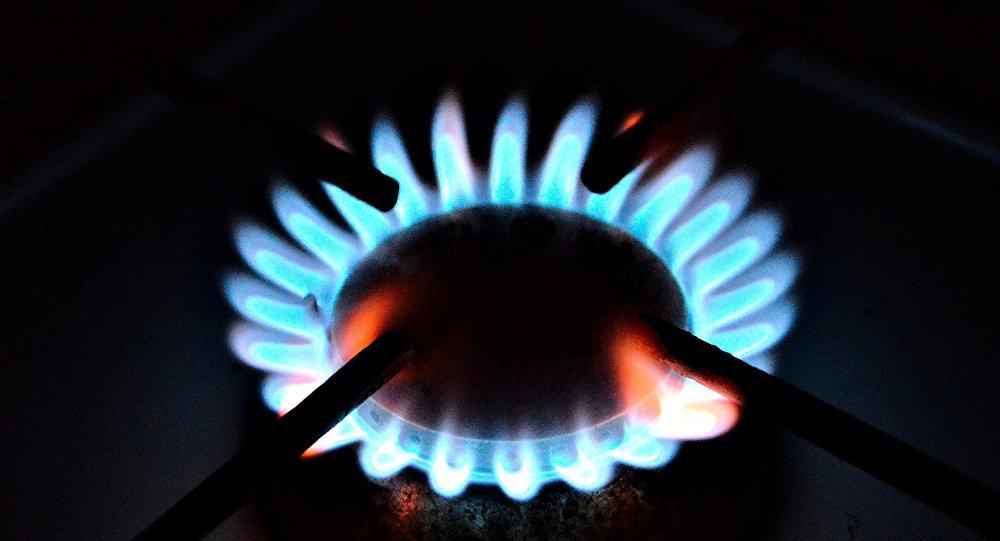 Беларусь возвратит долг, РФ значительно понизит цену нагаз— Газовый договор