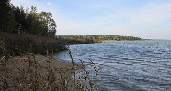 Окончено следствие обубийстве минчанки, чей труп был найден вВилейском водохранилище