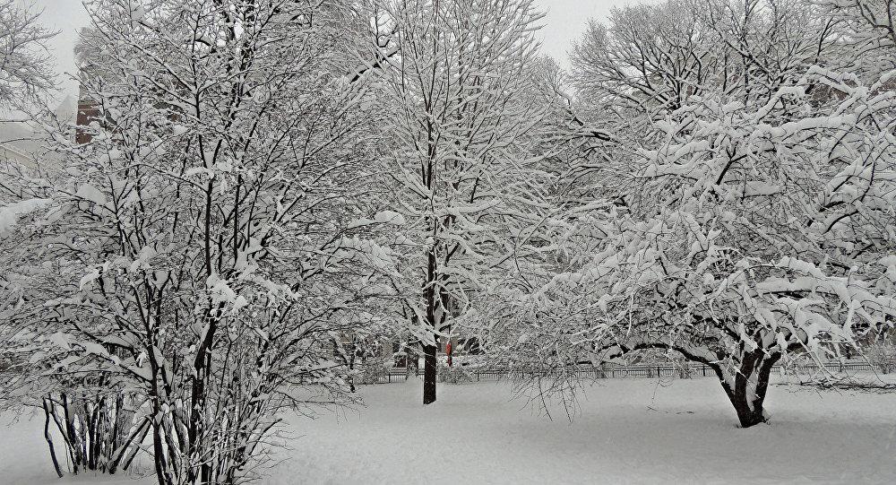 Мокры снег