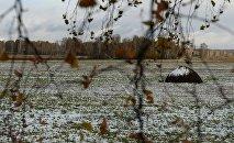 Мокрый снег. Осень