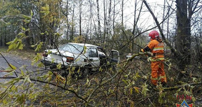 VW врезался вдерево вМиорах, умер пассажир