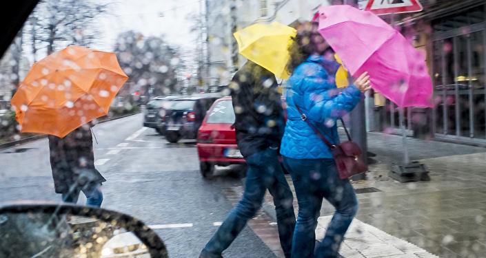 Сломанные зонты иповрежденные автомобили: 25октября вМинске бушевала стихия