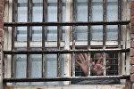 Заключенные в камере, архивное фото