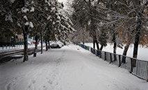 Снег в Гомеле