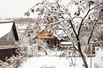 Снег в Могилеве