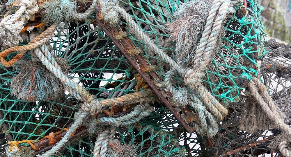 ВСтаробине cотрудники экстренных служб вытянули изреки запутавшегося всетях рыбака