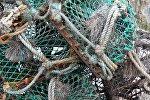 Рыбаловные сети, архивное фото