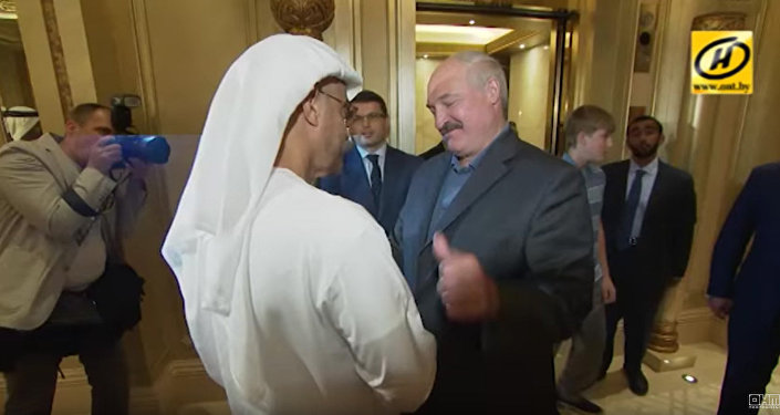 Путин иЛукашенко обсудили потелефону ситуацию вСирии