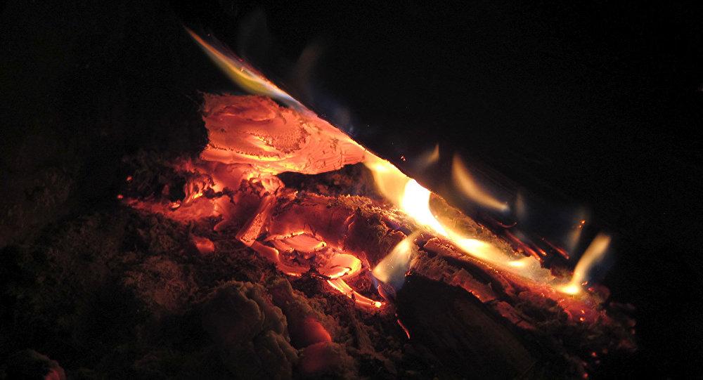 ВКопыле супруг сженой отравились угарным газом