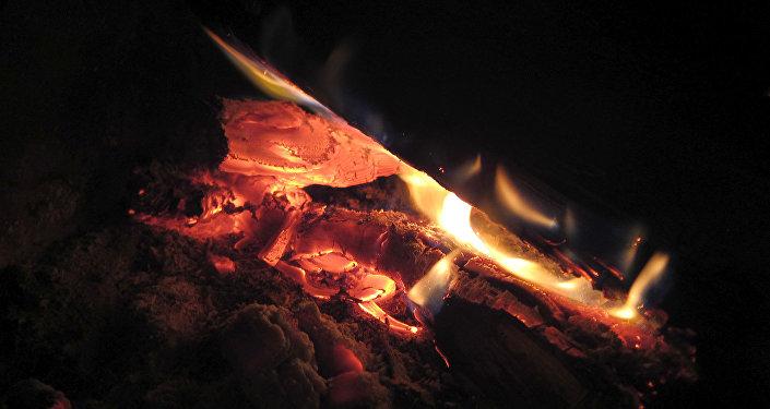 Женщина, двое детей ифельдшер отравились угарным газом вМозыре