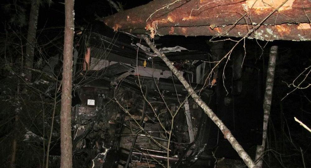 ДТП вГлусском районе: погибли бабушка ивнучка, двое вбольнице