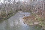 Река осенью, архивное фото