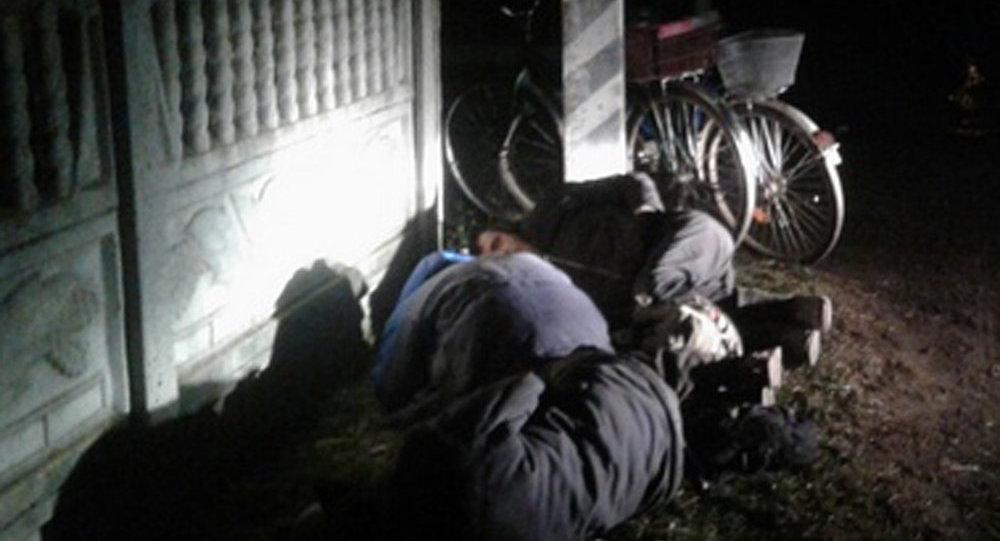 ВБарановичском районе трое сельчан заснули наобочине