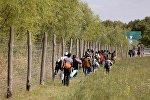 Группа беженцев идет вдоль венгерской границы