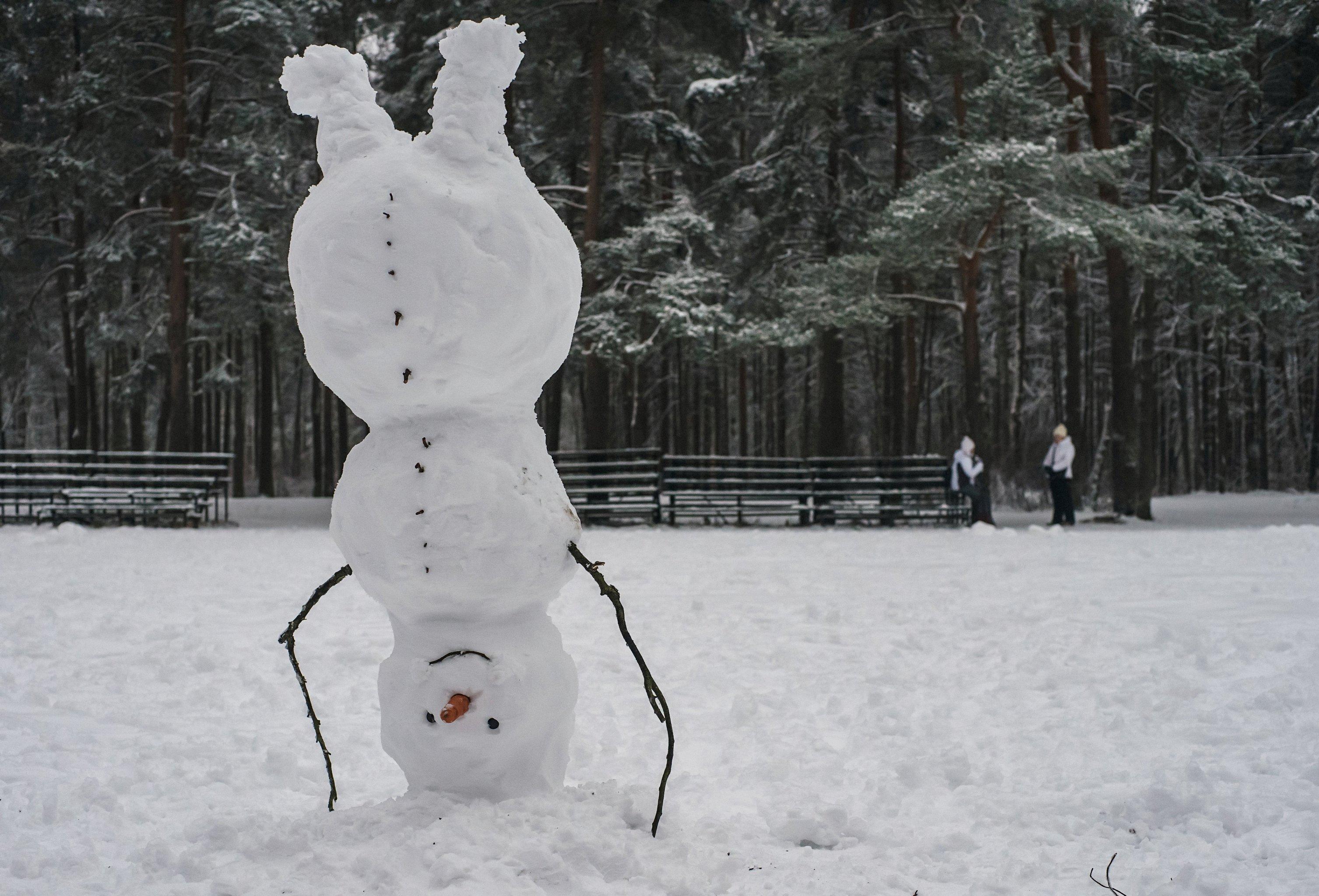 Снега нынешней зимой будет много, обещают синоптики