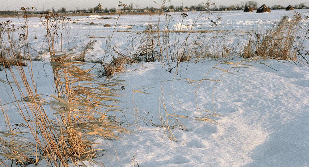 Снег на полі