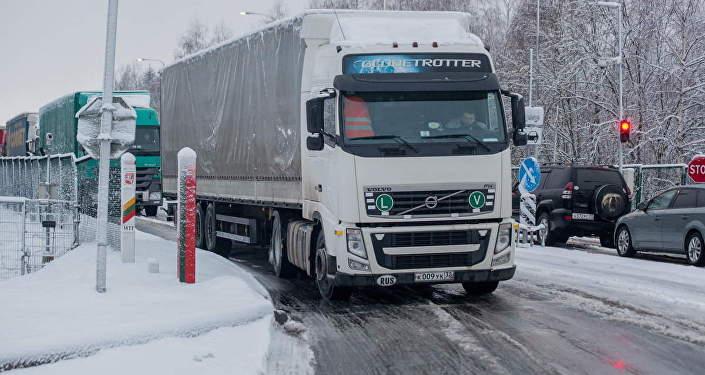 Около 700 фур собралось набелорусско-литовской границе