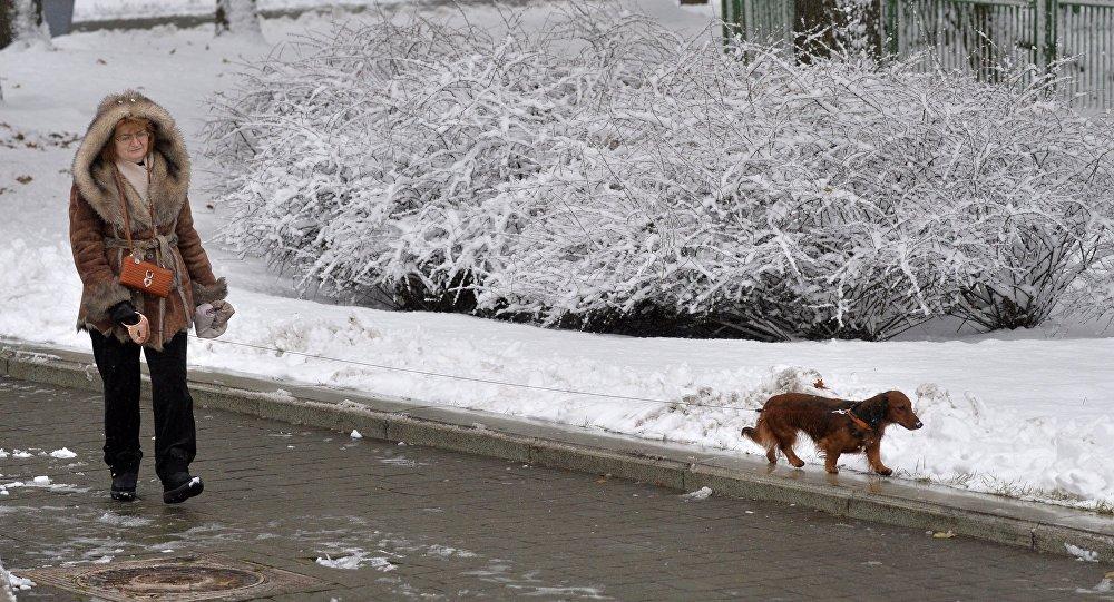 Оранжевый уровень опасности объявлен начетверг из-за гололёда ипорывистого ветра