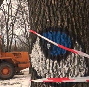 Техника Зеленстроя в парке Котовка