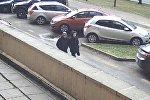 Подозреваемые в ограблении пенсионерки