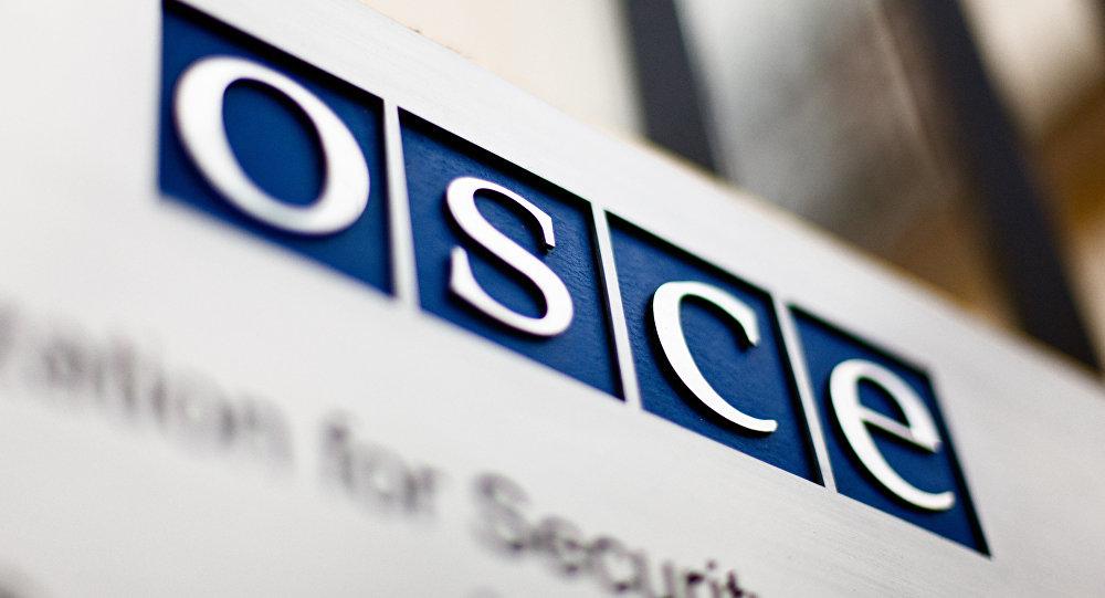 БДИПЧ ОБСЕ опубликовало итоговый отчет опарламентской кампании вРеспублике Беларусь