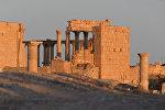 Древняя Пальмира, архивное фото
