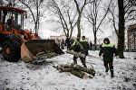 Вырубка деревьев в парке Котовка