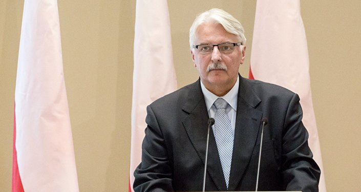 Министр иностранных дел Польши Витольд Ващиковский, архивное фото