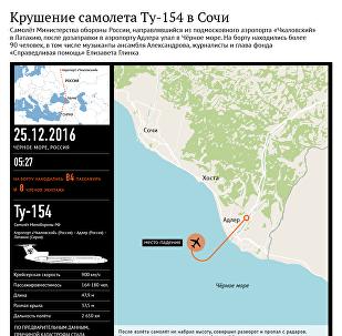 Крушение самолета Ту-154 в Сочи - инфографика на sputnik.by