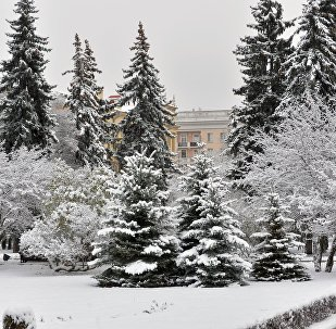 Снежная зима в Минске