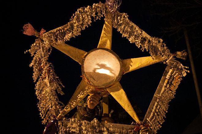 Богдановский буклей, или звезда с кониками