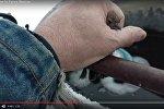 Операция воробей: видео спасения примерзшей птицы порвало интернет