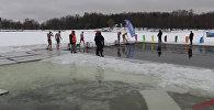 Чемпионат Беларуси по спортивному зимнему плаванию