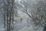 Парк Минска зимой