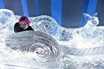 Девочка в ледяных санях