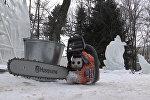Снежный череп и ледяной волк: какие скульптуры есть в ботаническом саду