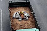 250-килограммовую бомбу, найденную в Салониках, вывезли на полигон