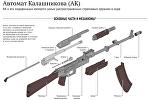 Автомат Калашникова (АК) - инфографика на sputnik.by