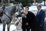 Президенту России Владимиру Путину президент Кыргызстана Алмазбек Атамбаев подарил коня серой масти